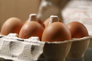Eier kennzeichnen